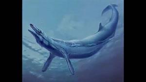موجودات دریایی ماقبل تاریخ
