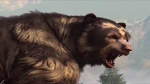 خرس صورت کوتاه