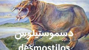 جانوری با دندانهای عجیب