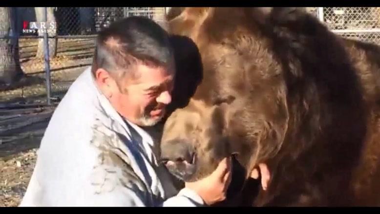 بازی بازی با خرس هم بازی!