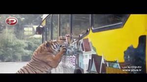 این عجیب ترین باغ وحش جهان است: وقتی حیوانات به انسان های در قفس حمله می کنند!