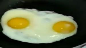 تخم مرغ سخنگو