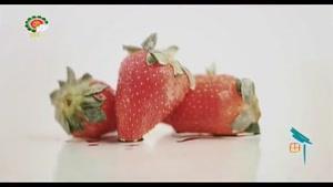 میوه درمانی _ توت فرنگی