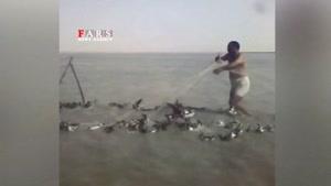کشتار بیرحمانه پرندگان مهاجر