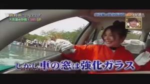 راه شکستن شیشه خودرو در مواقع اضطراری