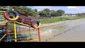 مسابقه شنای خوکها در دریاچه