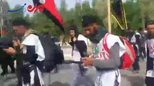 فیلم/ پیاده روی اربعین حسینی در مسیر نجف به کربلا