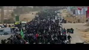 فیلم/شور عاشقان حسینی در مرز مهران