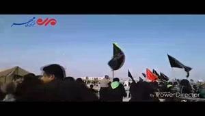 فیلم/حال و هوای پیاده روی اربعین از نجف تا کربلا