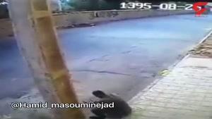 خوردن کلاغ مرده از روی گرسنگی در ایران