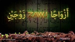 اعجاز قرآن - مادگی و نرینگی در گیاهان