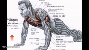 بهترین تمرینات بدن سازی