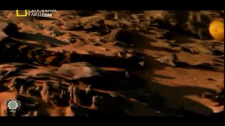 مستند مار کبری زهرپاش