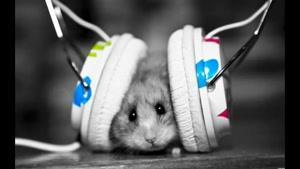 Nice Electro_Dubstep music