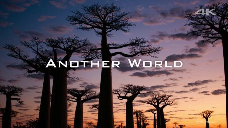 طبیعت و حیات وحش زیبا با دی جی آی فانتوم