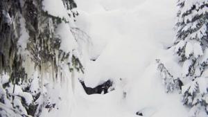 برترین اسنوبرد ۲۰۱۵