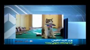 اعتماد وزیر خارجه انگلیس به گربه کارمند