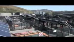 عملیات نجات پستانداران دریایی در کالیفرنیا