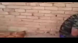 فیلم/شکار داعشی ها در الصقلاویه فلوجه