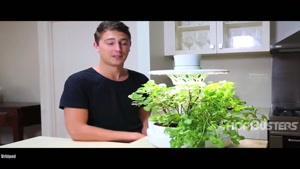 فناوری جدید در پرورش گل و گیاه خانگی