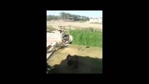 فیلم/ پناه بردن اهالی مهاجر «فلوجه» به «حشد الشعبی» عراق