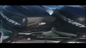 لحظه پناه آوردن یک فک به قایق از دست نهنگهای قاتل