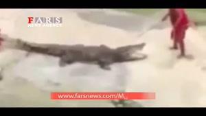 تمساح سر مربی خود را گاز گرفت!