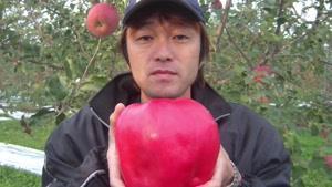 گرانترین میوه های جهان را بشناسید