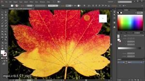 نحوه تبدیل فرمت JPEG به حالت Vector