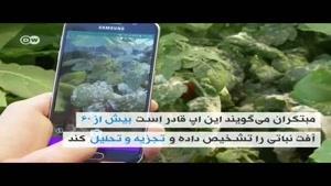 فیلم/ اپلیکیشنی علیه آفات نباتی