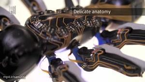 رباتهای شگفت انگیزی که مورچههای مصنوعی هستند