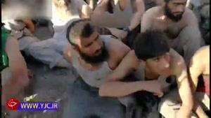 تسلیم شدن تروریستهای داعش در برابر ارتش عراق