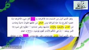 خواص و فواید زیتون و اهمیت قرآن به آن ، معجزه علمی قرآن