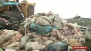 سیل ویرانگر زباله در جنگل های رشت