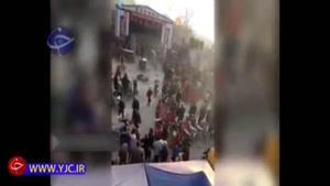 حمله ببرها به تماشاگران پس از فرار از سیرک