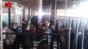 کنترل و بازرسی ویزای زائران اربعین در گیت های عراق