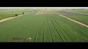 لبخند طرح ۵۵۰ هزار هکتاری به اراضی خوزستان