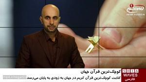 ثبت کوچکترین قرآن جهان در گینس