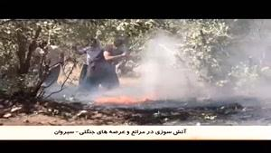 مهار آتش سوزی در جنگل های سیروان، آبدانان و ملکشاهی