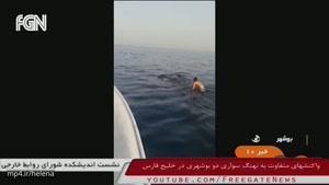 مصاحبه با جوان بوشهری که نهنگ سواریش جهانی شده بود