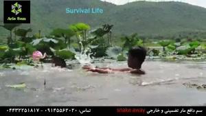 حمله مار آناکوندا به یک پسر در رودخانه!!!