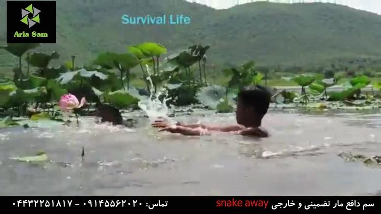 حمله مار آناکوندا در زیر آب به یک مرد!!!