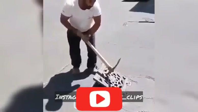 کار پسندیده ی یک شهروند با نجات دادن یک سگ