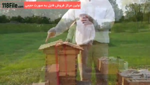 ۱۰ نکته کاربردی آموزش زنبورداری و تولید عسل