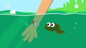 انیمیشن ماهی های بادکنکی دوبله فارسی قسمت 62
