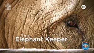 انیمیشن آموزش زبان انگلیسی دنیای حیوانات قسمت هفتاد و هفت