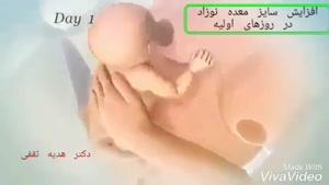 رشد نوزاد