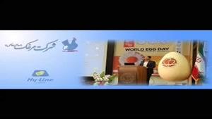 فروش مرغ نژاد تخم گذار