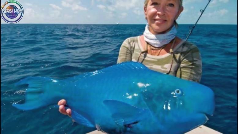 کشف های عجیب و غریب ماهیگیرها