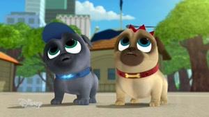 انیمیشن Puppy Dog Pals فصل 2 قسمت نه
